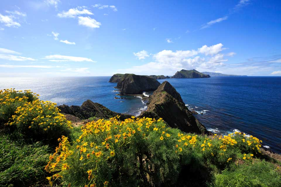 California 101: Channel Islands National Park