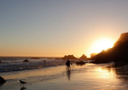 Discover Los Angeles – Things to Do in Malibu