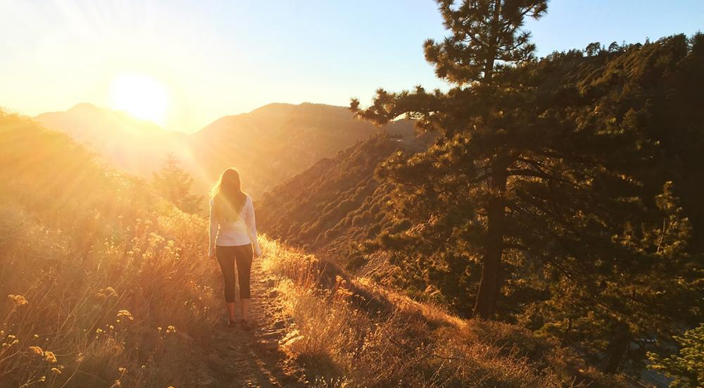 Forest Bathing in California: An Introduction