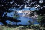 Camping Reservations - Salt Point State Park