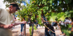 Visit SLO CAL: Wine Country