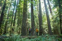 Get Outside and Enjoy National Park Week in California