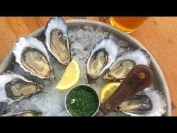 Shuck-Your-Own Oysters on Tomales Bay