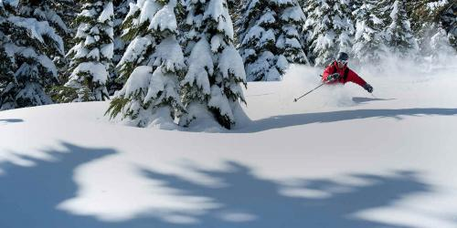 Skiing and Snowboarding in California